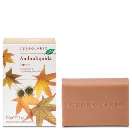 Sapone Ambraliquida 100 g